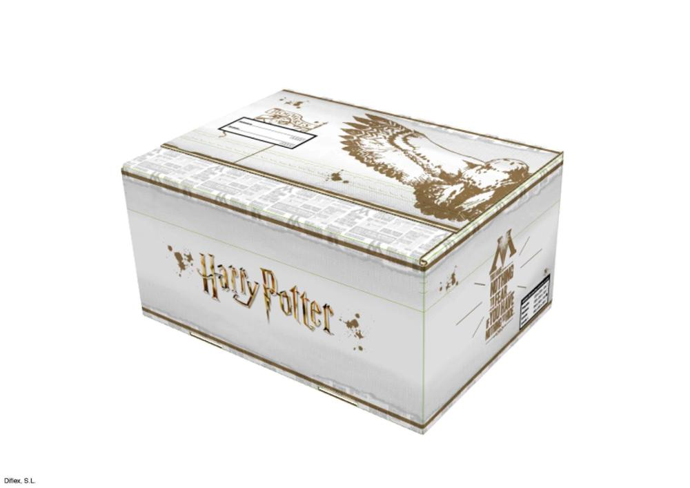 Caja grande Harry Potter