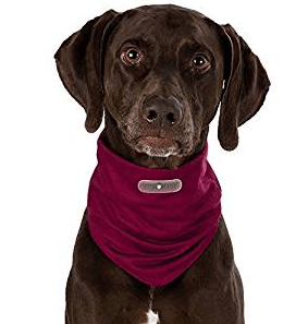 Trixie Bandana Insect Shield®