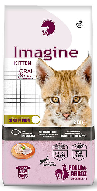 Dapac Imagine Gato Kitten pollo y arroz 2KG