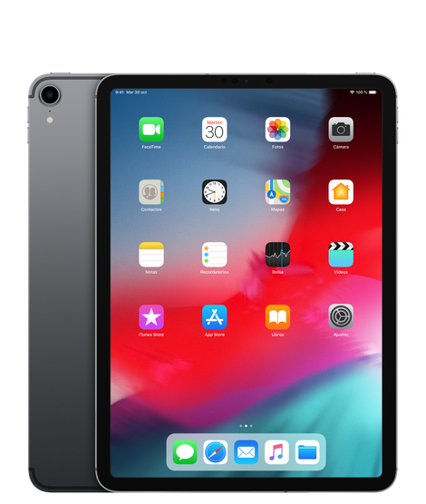 KareenaElectronics - APPLE iPAD PRO 11' 256GB WIFI GRIS ESPACIAL